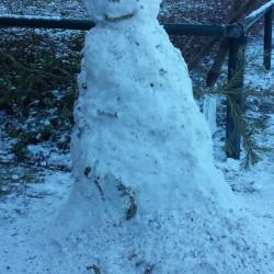 Meet our snowman, Olaf!