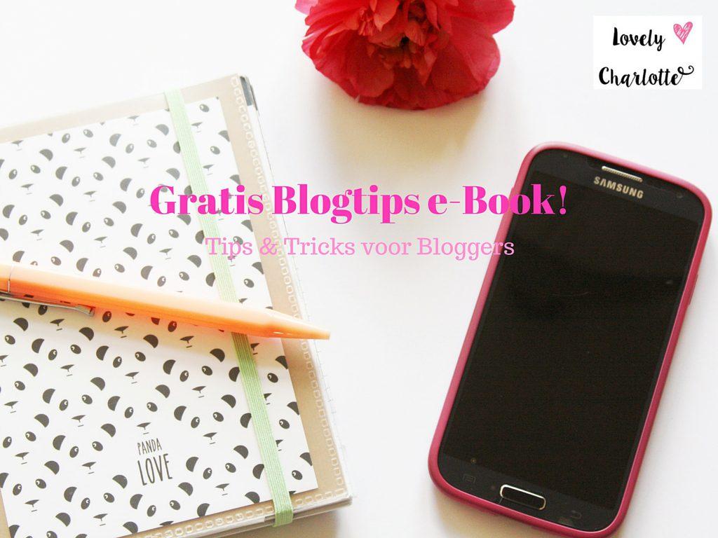Gratis Blogtips e-Book!