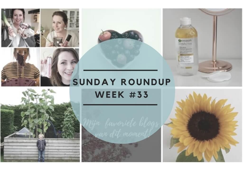 Sunday Roundup Week #33 Per artikel op een rijtje!