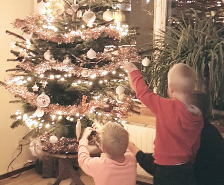 Roelfien | Een volle en ronde kerstboom