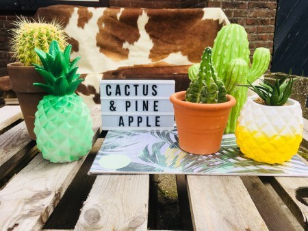 Karin   Summer Icons   Pineapple & Cactus
